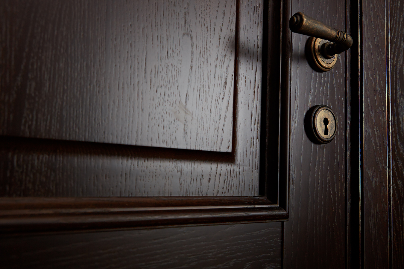 Детальное фото элементов дубовой двери Брянский Лес
